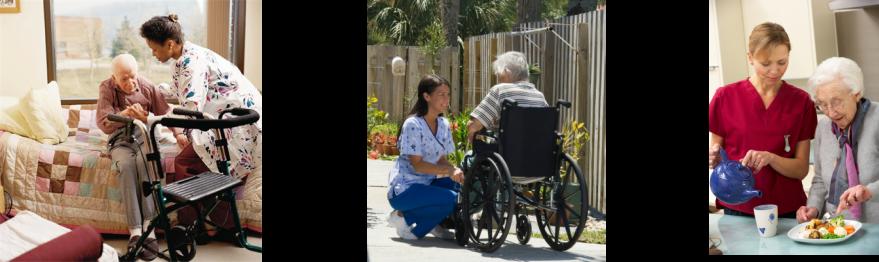 Elite senior Care main